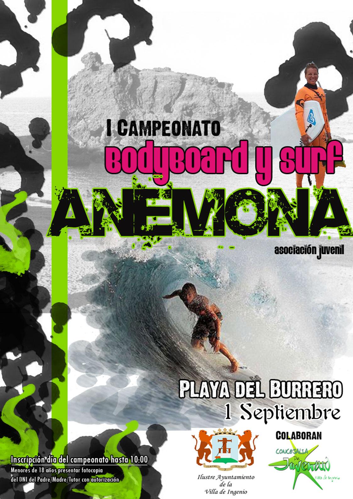 Campeonato de Surf y Bodyboard Anémona 2007